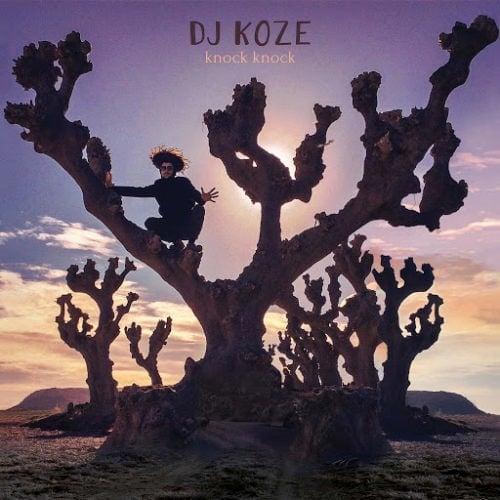 Dj Koze - Knoc Knock ©